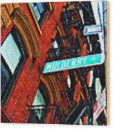 Mulberry Street Sketch Wood Print