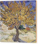 Mulberry Tree Wood Print