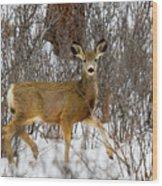 Mule Deer Portrait In Heavy Snow Wood Print