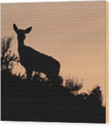 Mule Deer Silhouetted Against Sunset Ridge Wood Print
