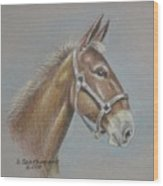 Mule Head Wood Print by Dorothy Coatsworth