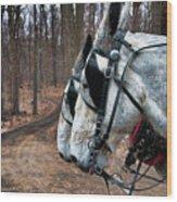 Mules At Sugar Camp Wood Print