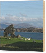 Mull And The Trossachs From Iona Wood Print