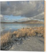 Mullaghmore View Wood Print
