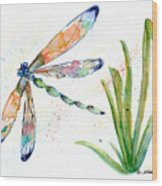 Multi-colored Dragonfly Wood Print