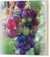 Multicolor Grapes Wood Print