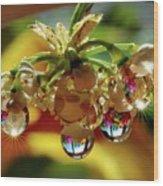 Multicolored Drops Wood Print