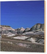 multicolored hills in Petrified Forest National Park Wood Print