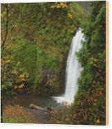 Multnomah Autumn Wood Print