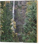 Multnomah Falls - 5 Wood Print
