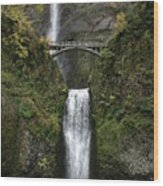Multnomah Falls 1 Wood Print