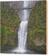 Multnomah Falls 1 Wood Print