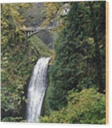 Multnomah Falls 3 Wood Print