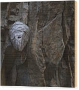 Mummy Head Wood Print by Barbara Schultheis
