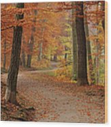 Munich Foliage Wood Print by Frenzypic By Chris Hoefer