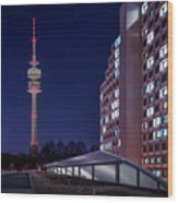 Munich - Olympictower And Village Wood Print