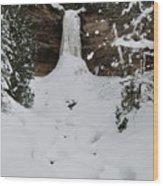 Munising Frozen Wood Print by Michael Peychich
