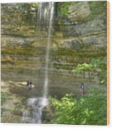 Munising Waterfall Wood Print