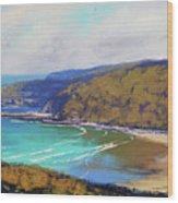 Munmorah Coastline Australia Wood Print
