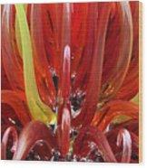 Murano Artglass Wood Print