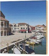 Murano Italy Wood Print
