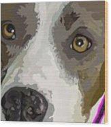 Murphy -- The Closeup Wood Print