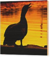 Muscovy Sunset Wood Print