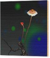 Mushroom 1 Wood Print by GuoJun Pan