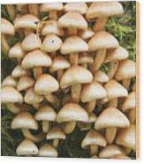 Mushroom Condo Wood Print
