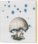 Mushroom Dreams Wood Print