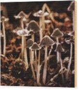 Mushroom Friends Wood Print