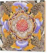 Mushroom Mandala Wood Print