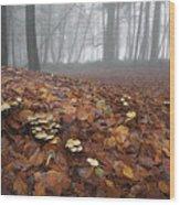 Mushroom Mound Wood Print