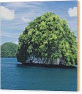 Mushroom-shaped Island Wood Print