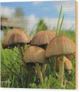 Mushroom Wood Print by Sheila Werth