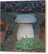 Mushroom Stool Wood Print
