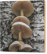 Mushroom Treehouse Wood Print