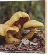 Mushroom Trio Wood Print
