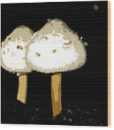 Mushrooms For Two Work Number 11 Wood Print