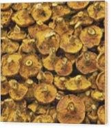 Mushrooms In Spain Wood Print