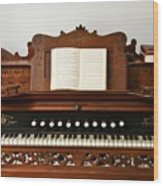 Music Maker Wood Print