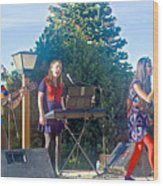 Musical Entertainers In Central Park In Bariloche-argentina Wood Print