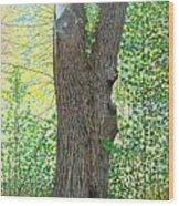 Muskoka Maple Wood Print