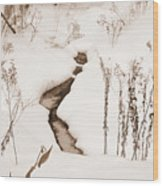 Muskoka Winter 1 Wood Print