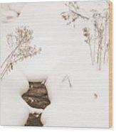 Muskoka Winter 2 Wood Print