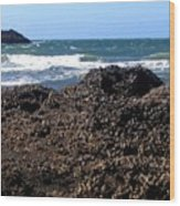 Mussels Wood Print
