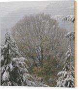 Mussoorie Winter 1 Wood Print