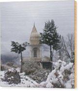 Mussoorie Winter -3 Wood Print