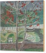 Mussorie_foothills Wood Print