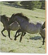 Mustang Mares Wood Print